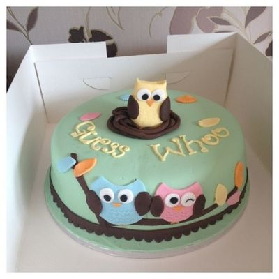 Owl Birthday Cake Site Pinterest