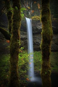 South Falls, Lower Silver Creek, Silver Creek State Park, Silverton, Oregon USA - One of my favorite hikes!