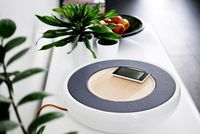 Ceramic Stereo - Play Songs From Smartphone Automatically