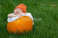 Cute Newborn Baby Sleeping in Pumpkin Horizontal Royalty Free Stock Photo
