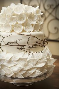 �™� white,leaves,flowers,twigs cake