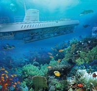 �€˜Submerge' Yourself to See the Underwater Beauty of the Caribbean on a Disney Cruise from Texas