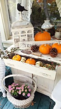 Ash Tree Cottage: Cloche Challenged But I Can Tweak#c6354682013183368188