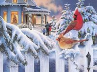 cardinals, snow, picket fence