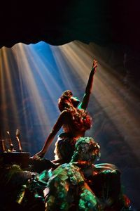 Me someday...so metaphorical, reaching for my goal to be a part of the Disney College Program and be Ariel in the 17 minute show. I know, I know talking about it on Pinterest won't get me anywhere, but I will do it!! I promise!