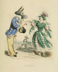 The Flowers Personified by J.J. Grandville
