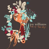 Joy Williams album cover