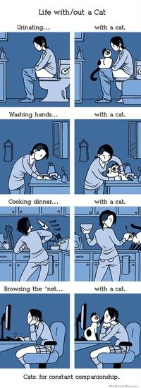 life-with-and-without-a-cat-comic