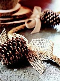 Decorate a buffet table with this simple garland. Use heavy-gauge, gold wire to attach pine cones to rope. Tie a bow made from coarsely woven hemp or cotton ribbon around the rope at the top of each pine cone to hide the wire. (Optional: Add a little ...