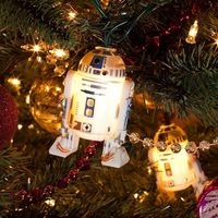 Star Wars Holiday Lights: R2-D2; or anytime lights!! :)