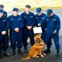 In a ceremony held on Monday morning, a two-year-old golden retriever named Buddy became the official mascot of the U.S. Coast Guard Station Menemsha in Massachusetts.