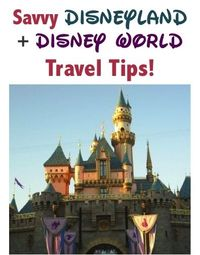 29 Savvy Disneyland and Disney World Travel Tips! ~ from TheFrugalGirls.com #travel #disneyland #disneyworld