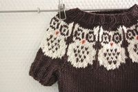 Owl sweater Knitting pattern with intarsia
