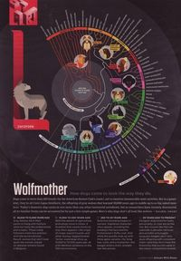 Dog breeds infographic